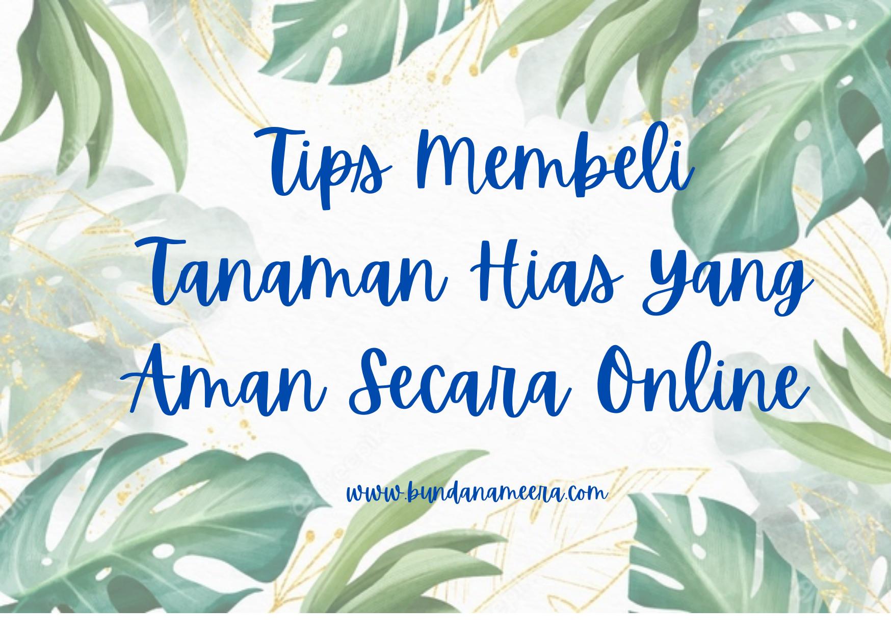 tips-beli-tanaman-online