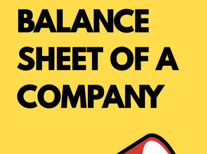How to read the balance of a company?