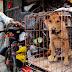 Κορωνοϊός: Τέλος στο κρέας σκύλου στην Κίνα εξαιτίας του ιού;
