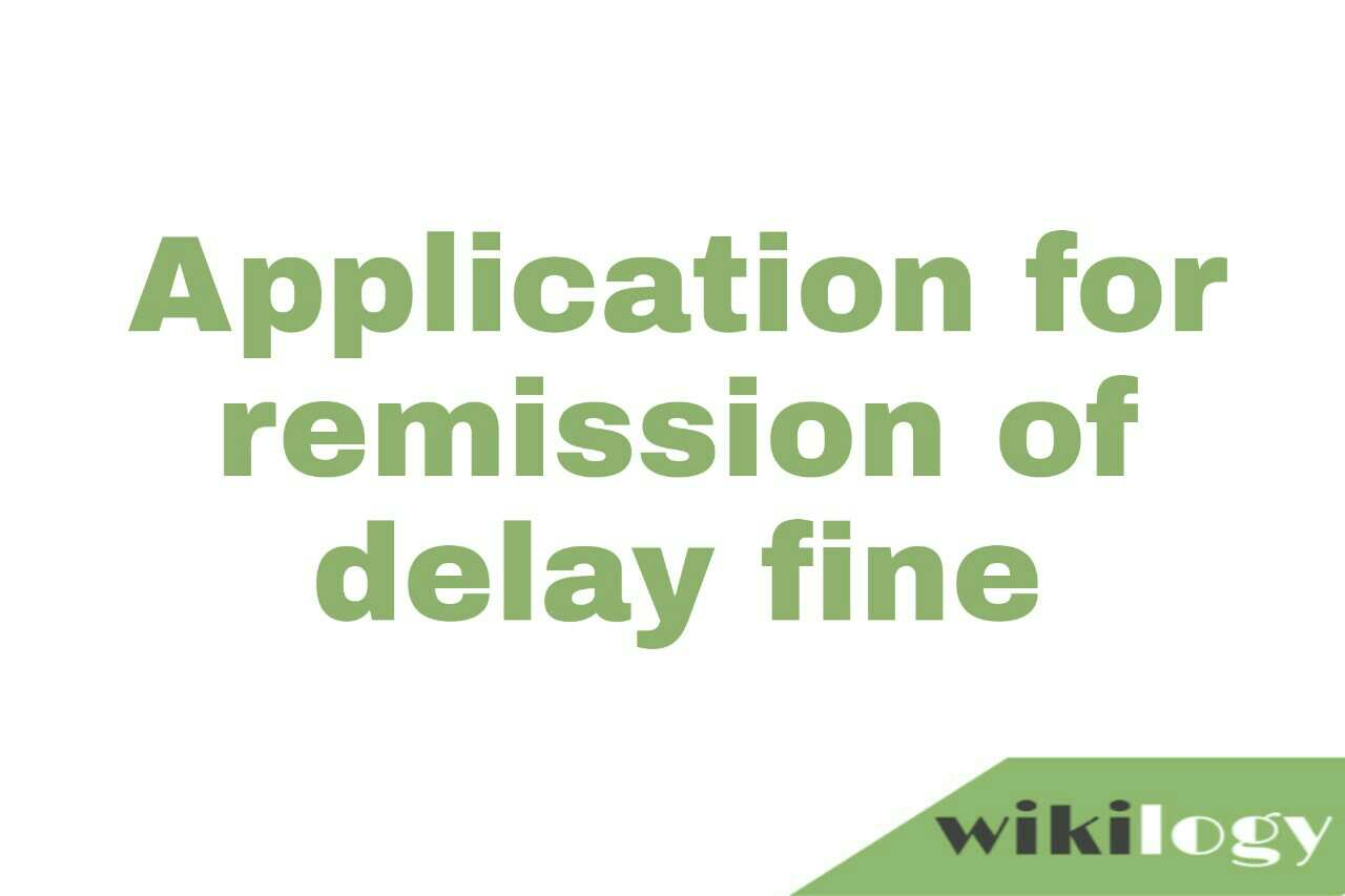 Application for remission of delay fine