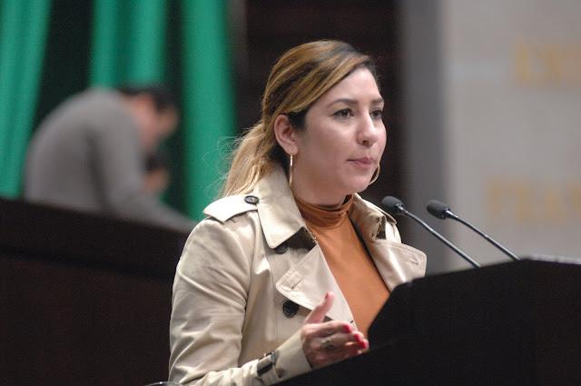diputada Azucena Rodríguez Zamora (PRD)