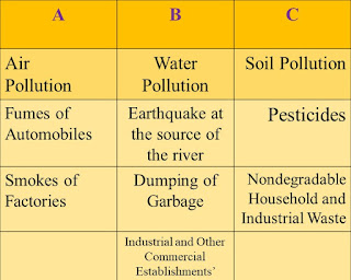 pollution question and answers, class 6, lesson 6