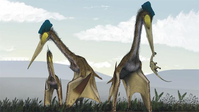 """Hallan fósiles del mayor 'monstruo' prehistórico volador que """"desayunaba"""" dinosaurios"""