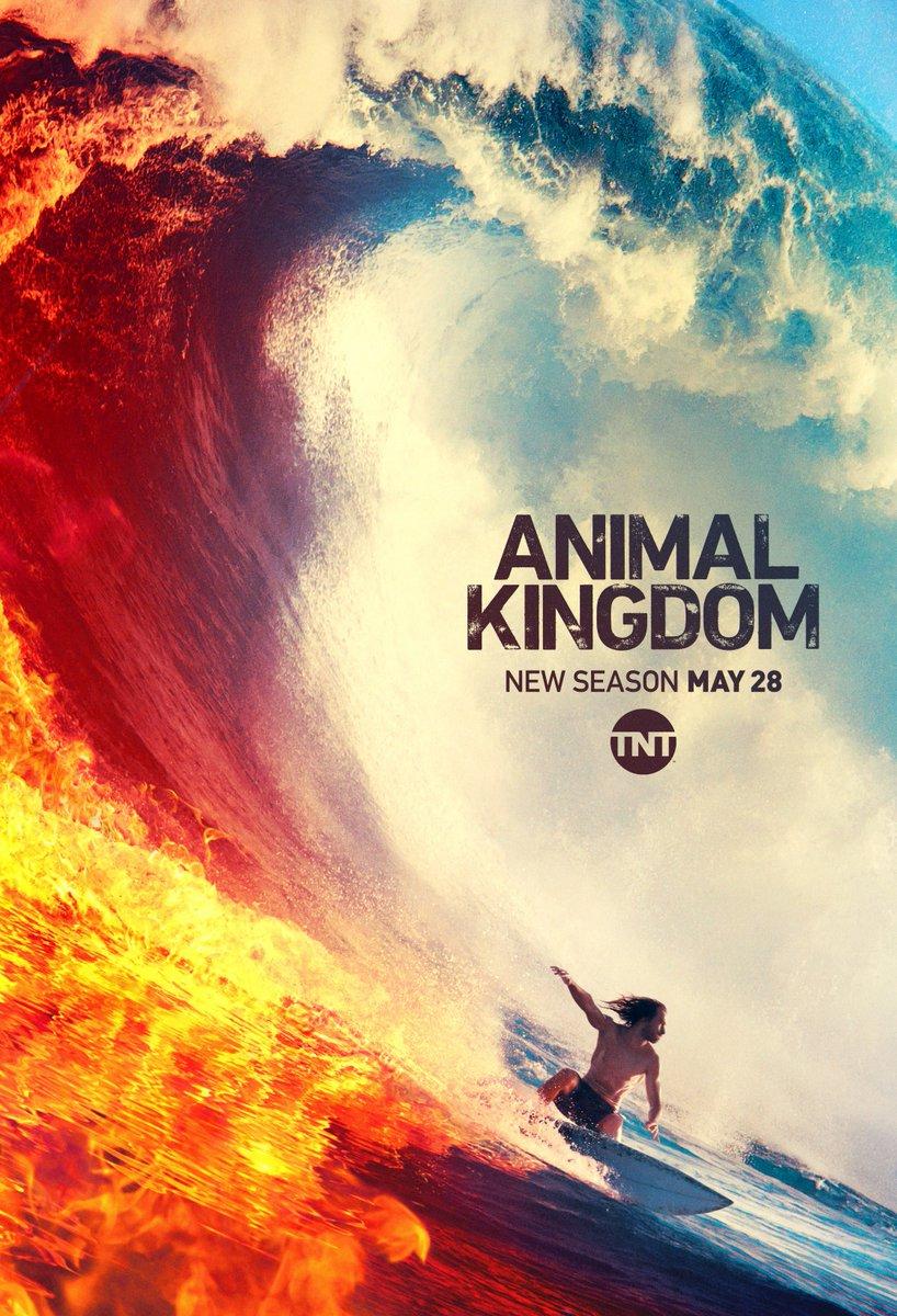 Animal Kingdom Temporada 4 Subtitulado 720p