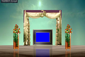 4k backgrounds video free download 1080p full wedding background