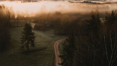 Aerial view, Road, Houses, Field, Trees, Fog, Dusk