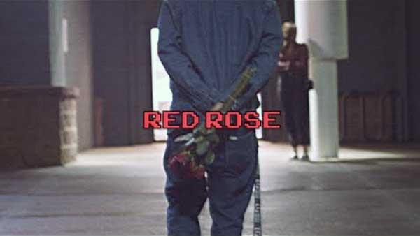 harman hundal red rose