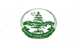 www.examiner.org.pk Jobs 2021 - Forest Department KPK Jobs 2021 in Pakistan