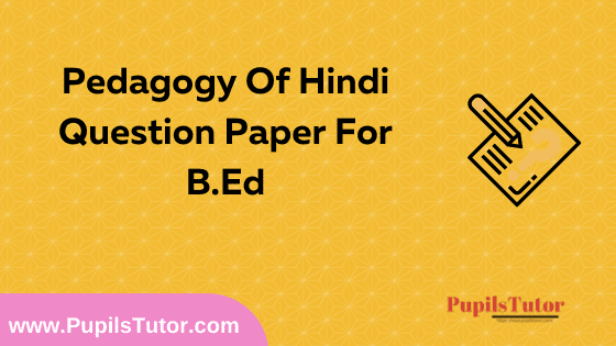 Pedagogy Of Hindi Question Paper For B.Ed 1st And 2nd Year And All The 4 Semesters Free Download PDF