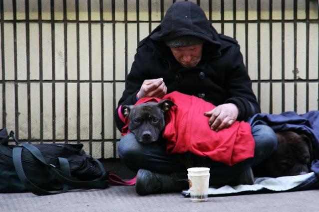 Бродяга привязался к найденной собаке и очень горевал, когда нашлись её хозяева. Поддержали несчастного люди со всего мира