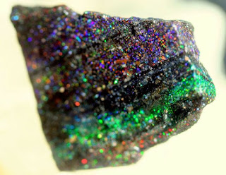 opalo negro de honduras en matriz de basalto - foro de minerales