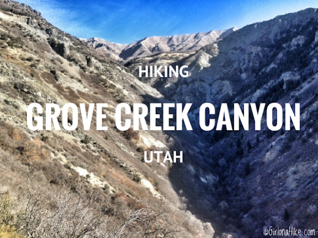 Hiking Grove Creek Canyon