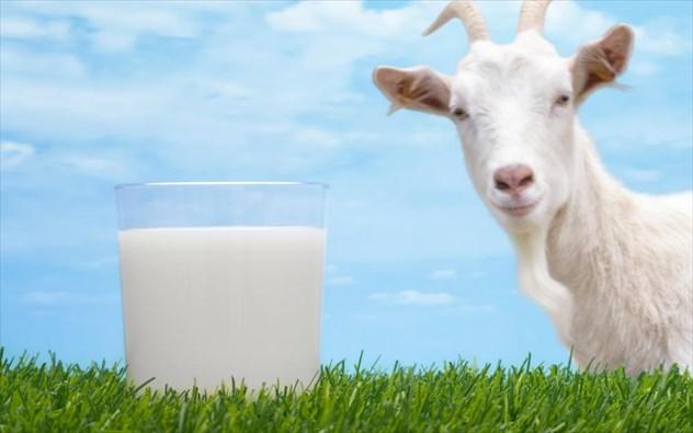 Αποβουτυρωμένο γάλα