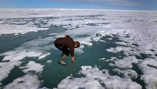 Altas temperaturas en alaska están derritiendo el hielo.