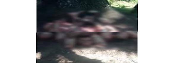 CJNG levanta, ejecuta y descuartiza a miembros del Cartel de Sinaloa en la Narcoguerra por Zacatecas
