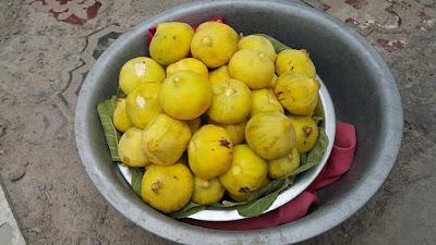 Xinjiang Figs