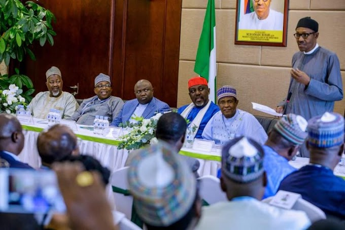 Governors Reveal Shocking Details After Meeting Buhari In Abuja