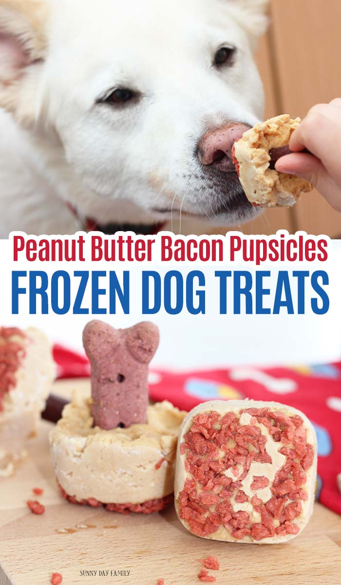 Dogs go crazy for these Peanut Butter Pupsicles! A yummy frozen treat for dogs that is so easy to make. Your dog will love these homemade dog treats!  #dogtreats #diydogtreats #homemade #easypetrecipes #dogs #dogmom #ad