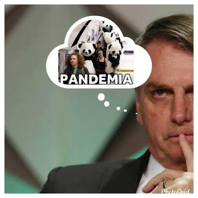 Depois da besta do apocalipse, o Brasil criou Bozo, o jegue da pandemia!