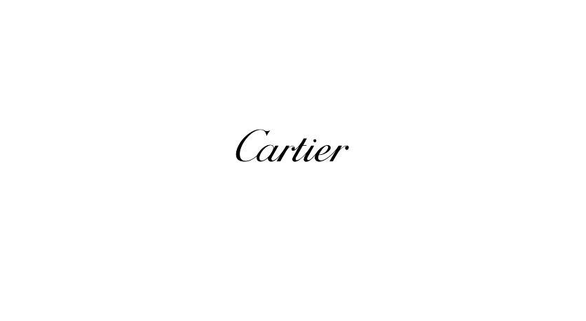 Nome modello e modella Cle De Cartier con orologio acciaio con Foto - Testimonial Spot Pubblicitario Cle De Cartier 2016
