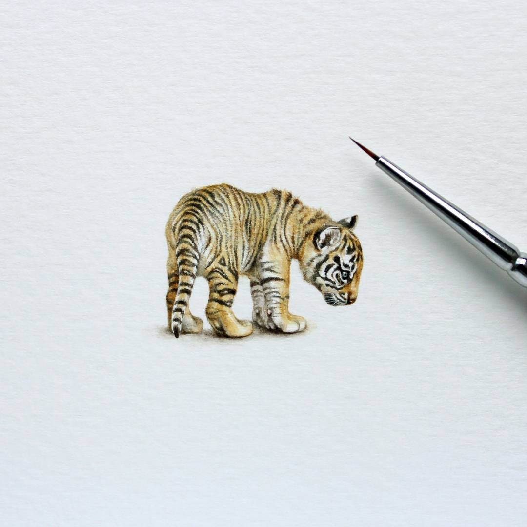 07-Tiger-Cub-Julia-Las-Tiny-Animal-Watercolor-Paintings-and-Other-Miniatures-www-designstack-co