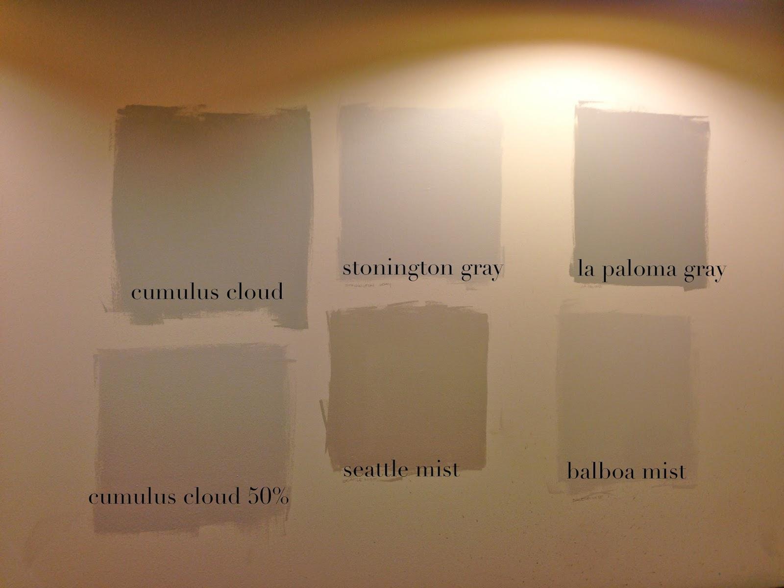Design Dump Choosing Paint For Grady S Bathroom