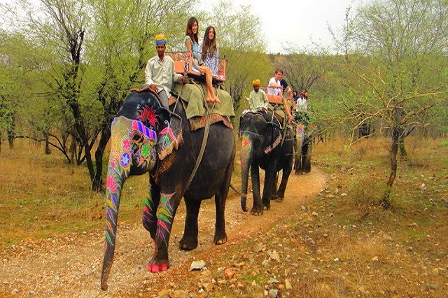 Rajasthan, India's largest state, has a feel of both the Middle East and America's Old Wild West, with its exotic Mughal architecture, colorful characters and arid climate.