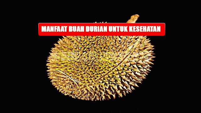 Manfaat Buah Durian Buat Kesehatan