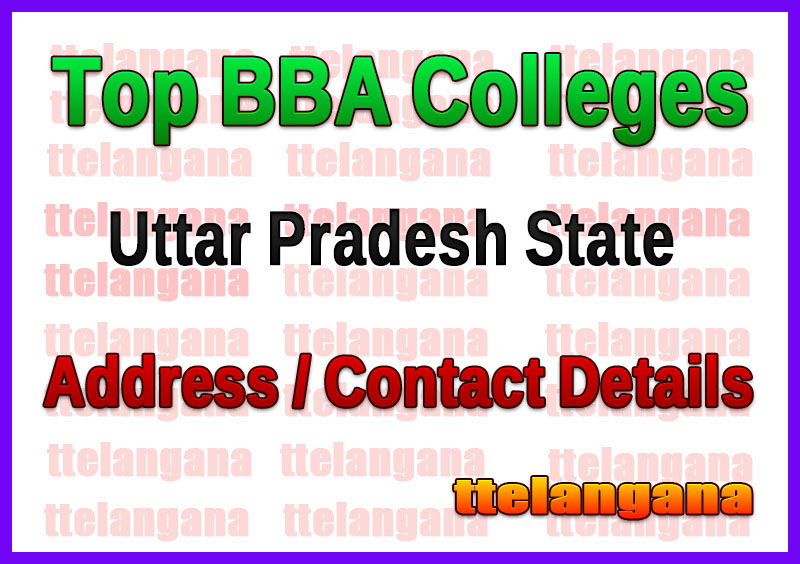 Top BBA Colleges in Uttar Pradesh
