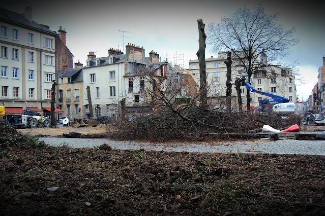 L'abattage des tilleuls de la Place Saint-Germain... (15 Janvier 2014)