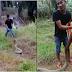 แทบช็อค!! สกิวจับงู ที่ไม่ธรรมดา!! จับงูจงอางยาว7เมตรด้วยมือปล่าว บ้าไปแล้ว เกือบดับ…(ชมคลิป)