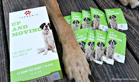therabis up and moving cannabinoid dogs joints