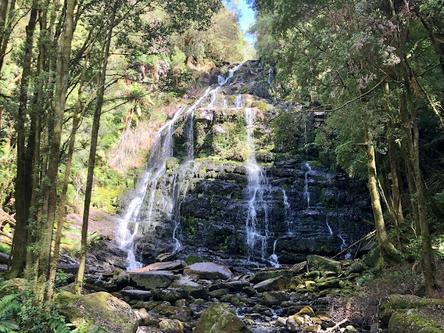 Nelson Falls Tasmania Great Short Walks