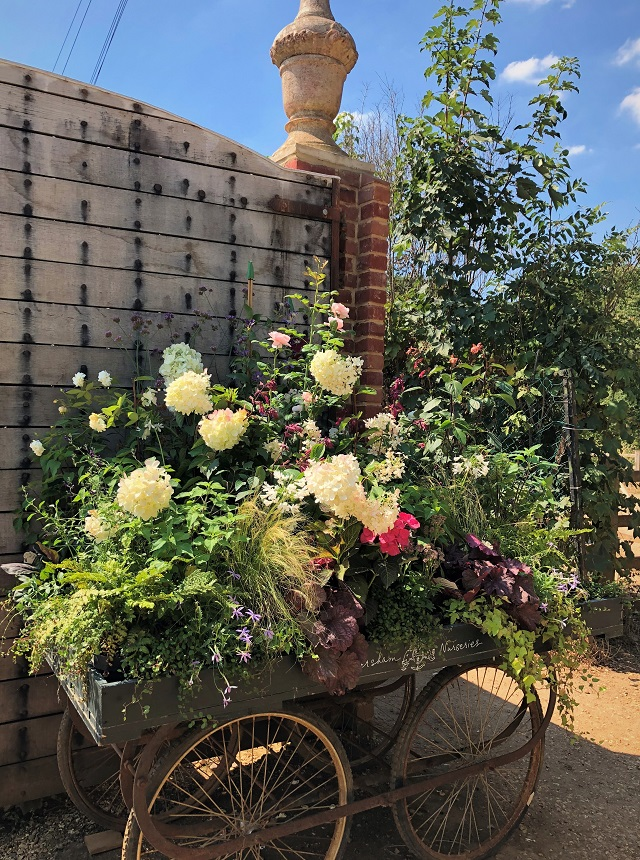Gone blogging Petersham Nurseries