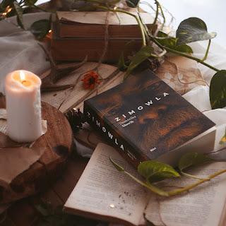#119 Zimowla - Dominika Słowik - recenzja - czy warto przeczytać?