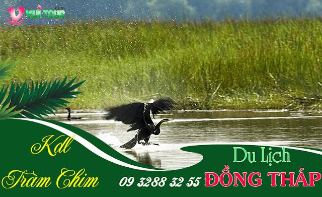 chum tour du lich ODng Thap
