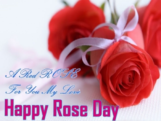 Rose Day SMS Messages, rose day wishes quotes