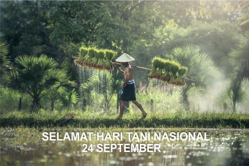 60 Kata Kata Ucapan Selamat Hari Tani Nasional 24 September