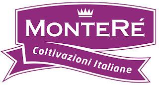 http://www.montere.it/?lang=it