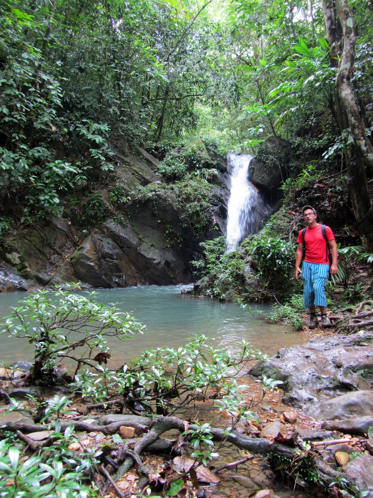 Visitar COCKSCOMB desde Dandriga - Um santuário de Vida Selvagem | Belize