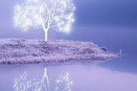 Il Est La Lumière et Les Yeux de L'Eternel ! L'instrument Parfait et nécessaire, Par Lequel Il témoigne Sa Puissance et Son Amour dans Le Monde.