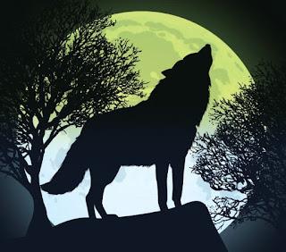 Luna, sol y lobo en la verde naturaleza