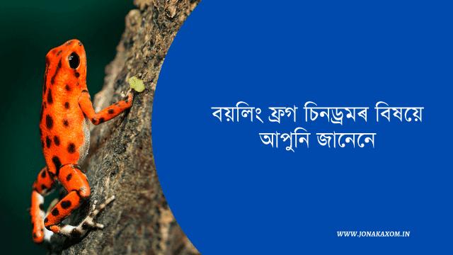 Assamese motivational article