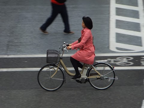 How Suburban Tokyo Promotes Cycling (without even trying)