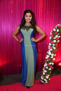 Anupama Parameswaran in lovely shaded gown ~  Exclusive 41.JPG