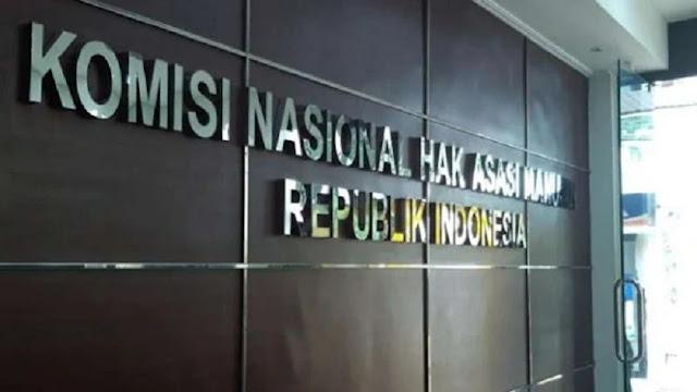 Komnas HAM Laporkan Hasil Temuan TWK ke Jokowi, Bukan ke KPK
