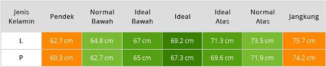 Tabel Tinggi Badan Bayi Usia Tujuh Bulan