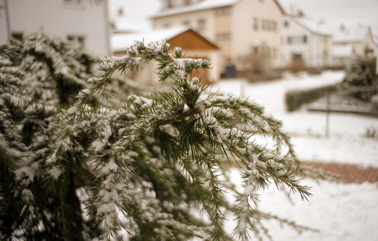 Fast schon ein Fremdwort: Winter