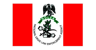 Drug Dealer Arrested By The NDLEA With 97 Wraps Of Cocaine