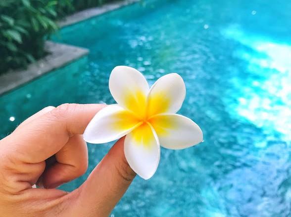 Viaggio a Bali informazioni